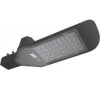 Светильник светодиодный PSL- 02 -100W