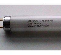 OSRAM Лампа люмин 36W/640 230V